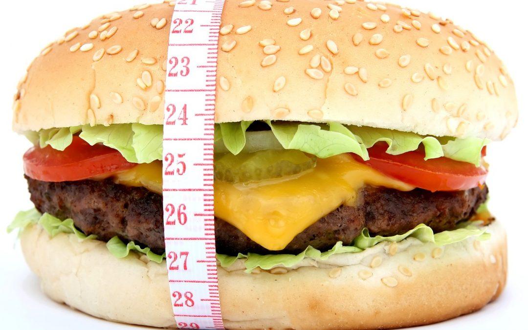 """Obesidad: ¿somos los únicos """"culpables""""?"""